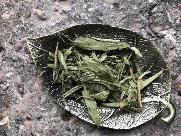 Травяной чай Стевия купить в Перми